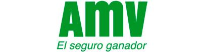 Logo: AMV, seguros de moto